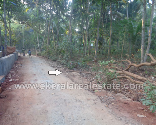 Kanjiramkulam Residential Land for sale Kanjiramkulam properties trivandrum kerala