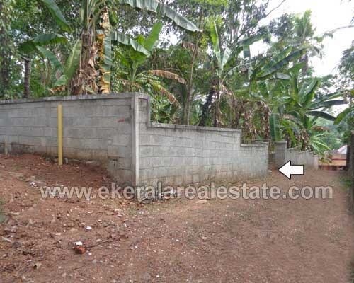 Nedumangad real estate Residential Land for sale Pathamkallu Nedumangad properties