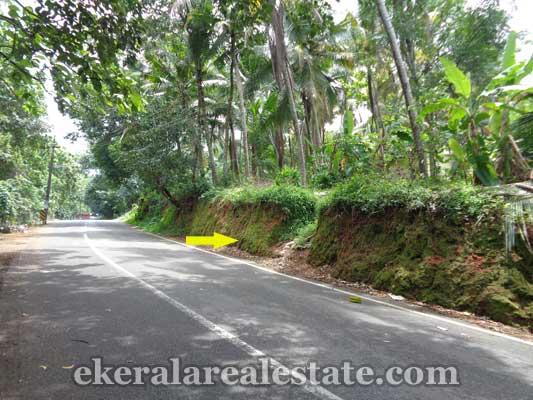 Vazhayila Trivandrum land property for sale in Kerala