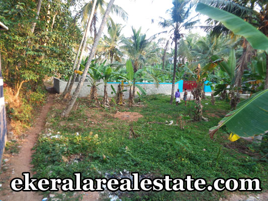 peyad chanthamukku real estate peyad land house plots sale kerala real estate trivandrum