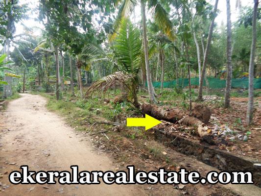Balaramapuram real estate properties land house plots sale at balaramapuram trivandrum kerala - Houses for small plots of land ...