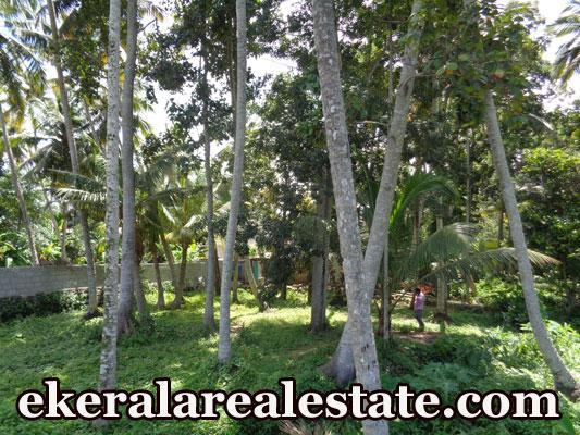 Plot Sale in Trivandrum Vellayani Below 2 Lakhs Per Cent Land Near Vellayani Devi Temple Trivandrum
