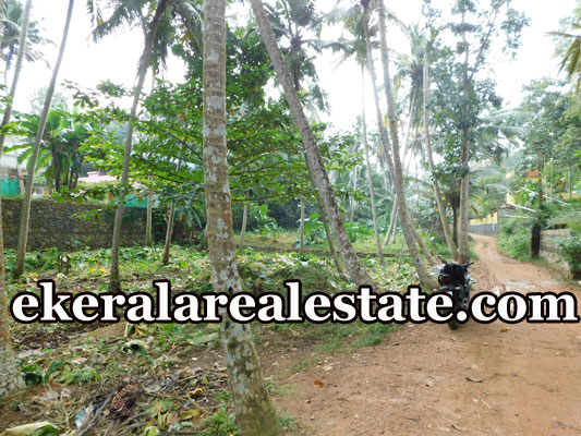 cheap rate residential land for sale at Neyyattinkara Trivandrum Neyyattinkara real estate kerala